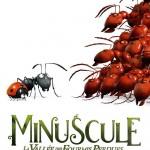 Visuel-à-plat-DVD---Minuscule---La-Vallée-des-Fourmis-Perdues
