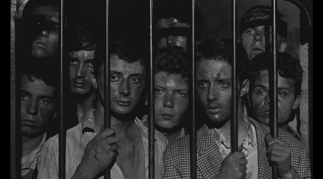 La Verte moisson - Blu-ray Gaumont Découverte