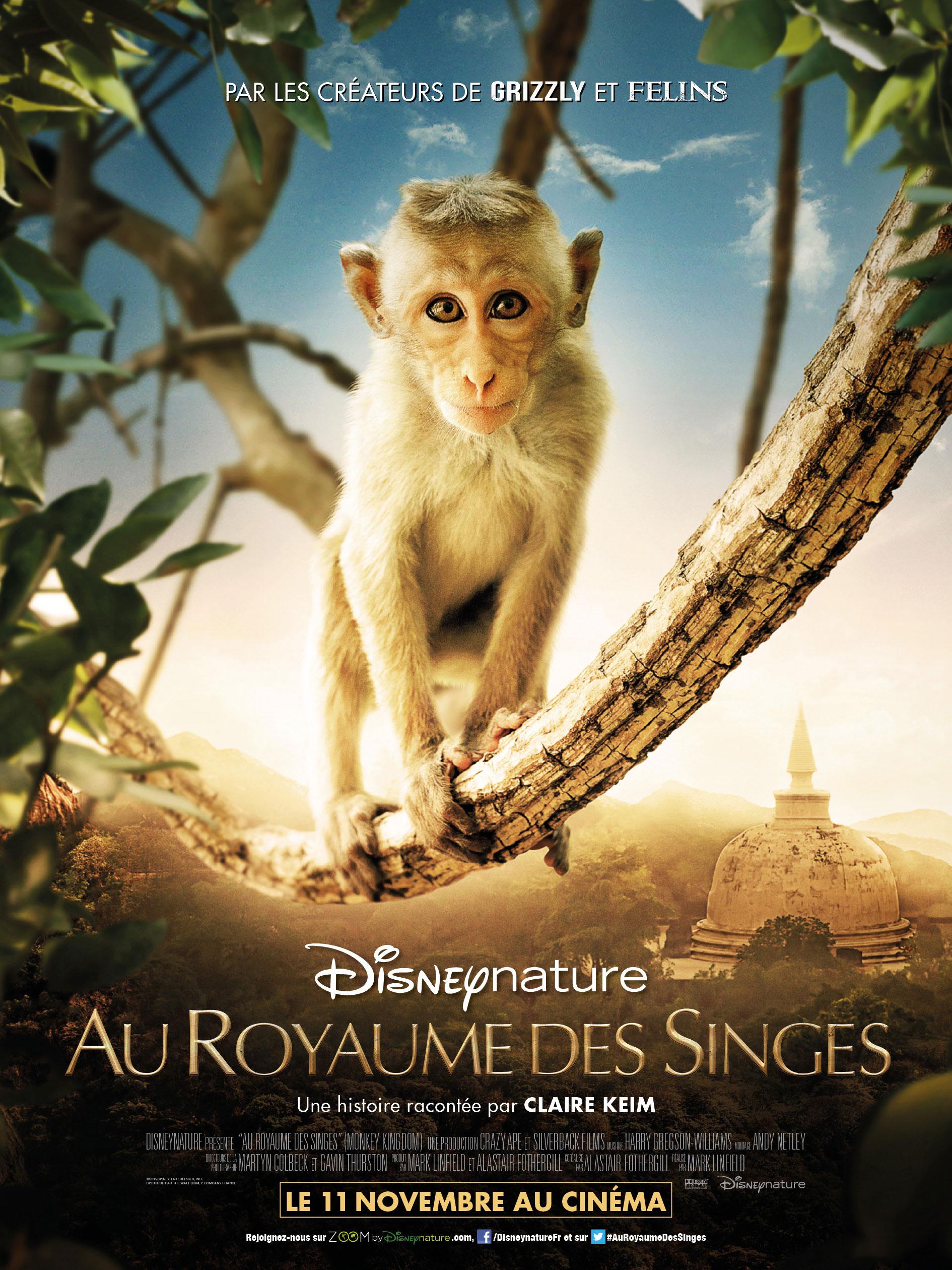 Au royaume des singes - Affiche
