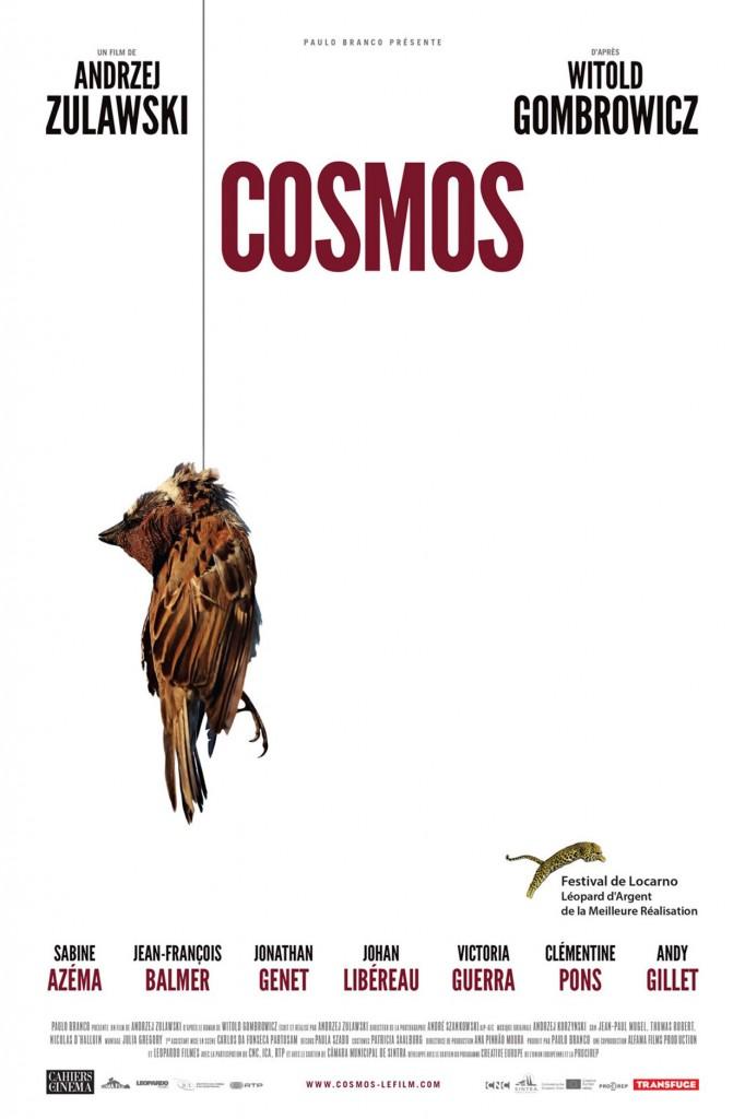 Cosmos - Affiche