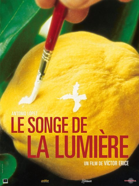 Victor Erice - Le Songe de la lumière