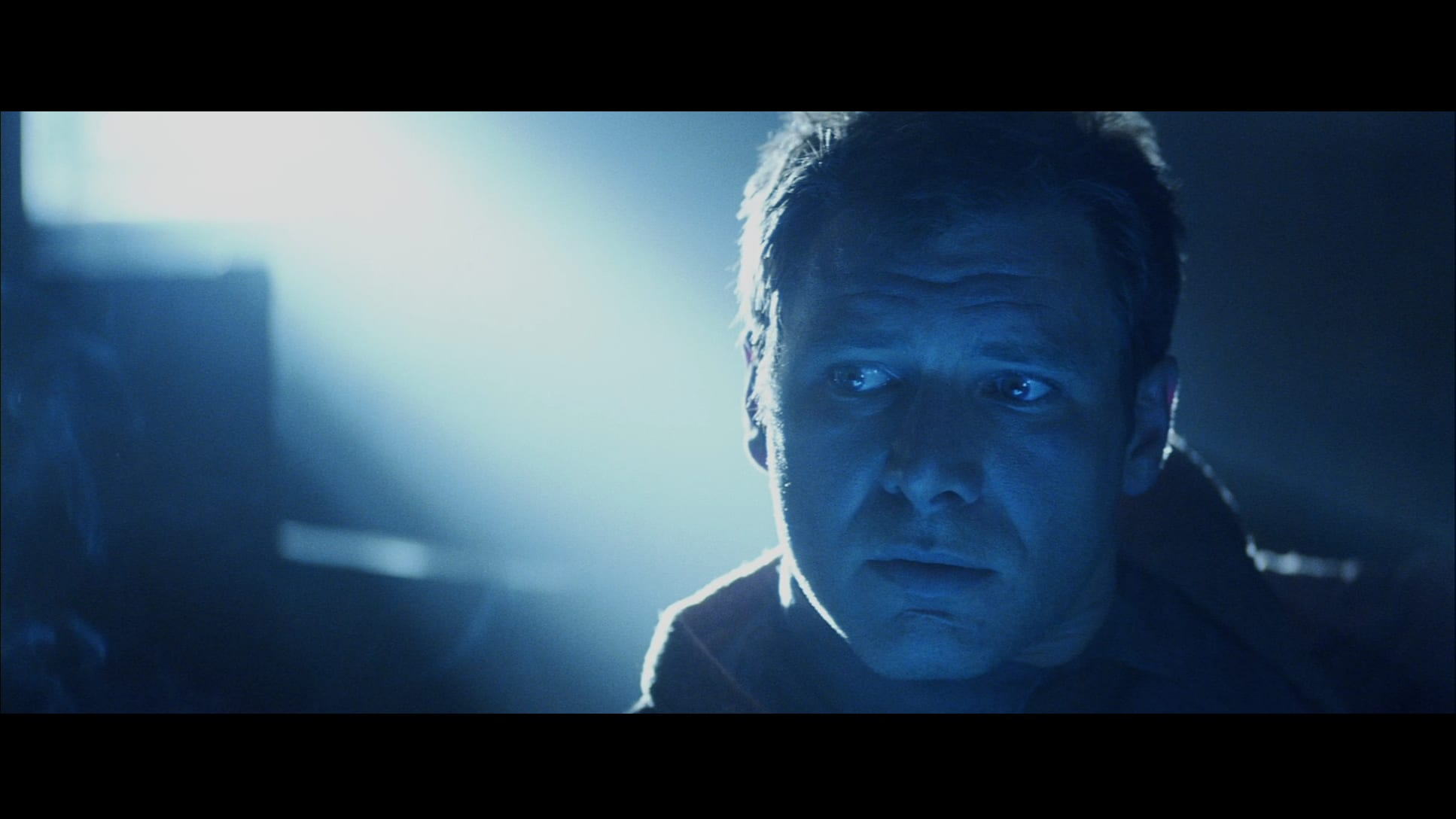 Blade Runner - Director's Cut - Capture Blu-ray