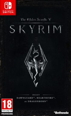 The Elder Scrolls V : Skyrim - Nintendo Switch