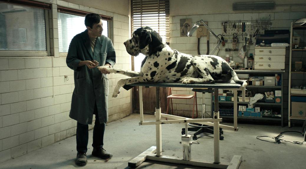 Dogman - Image une fiche film