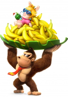Mario + The Lapins Crétins Kingdom Battle : Donkey Kong Adventure - Nintendo Switch