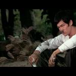 Big Boss (1971) de Lo Wei – Édition 2011 – Capture Blu-ray