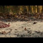 Sans un bruit (2018) de John Krasinski – Capture Blu-ray