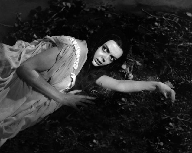 Danse macabre - Midi Minuit Fantastique